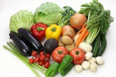 ビタミンの重要性について